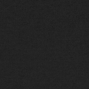T01 - Black Cat